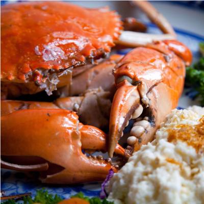 lmd-mall-restaurant-tsing-tao