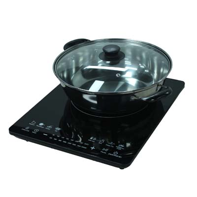 SINGER INDUCTION COOKER